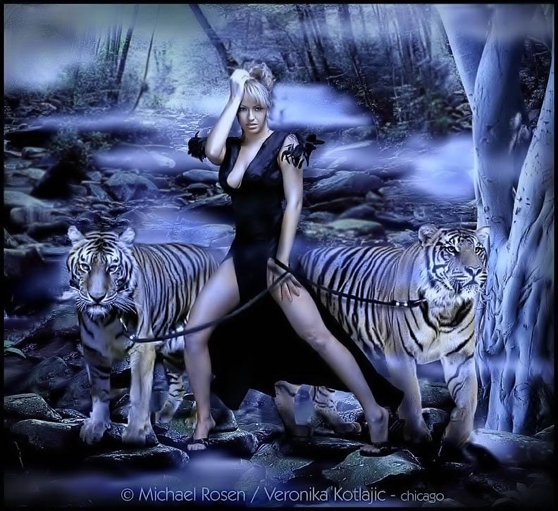 Fantasy art - Page 5 VERONIKA%20and%20cats%202L